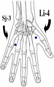 Detailed Pressure Point Guides to Unlock Injury Recovery, Increases Strength, Stamina and more
